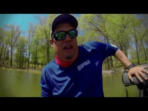 Catching Two Bass Off the Same Bed while Sight Fishing