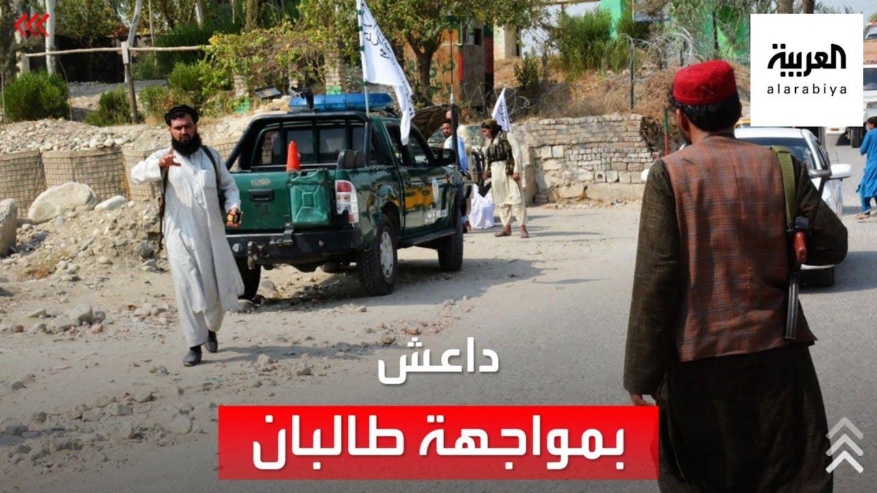 ما هي أوجه الخلاف الفكرية بين داعش وطالبان؟  - نشر قبل 7 ساعة