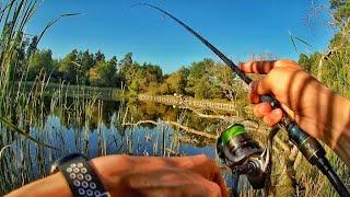 Эта приманка сделала мне рыбалку Микроджиг в сентябре
