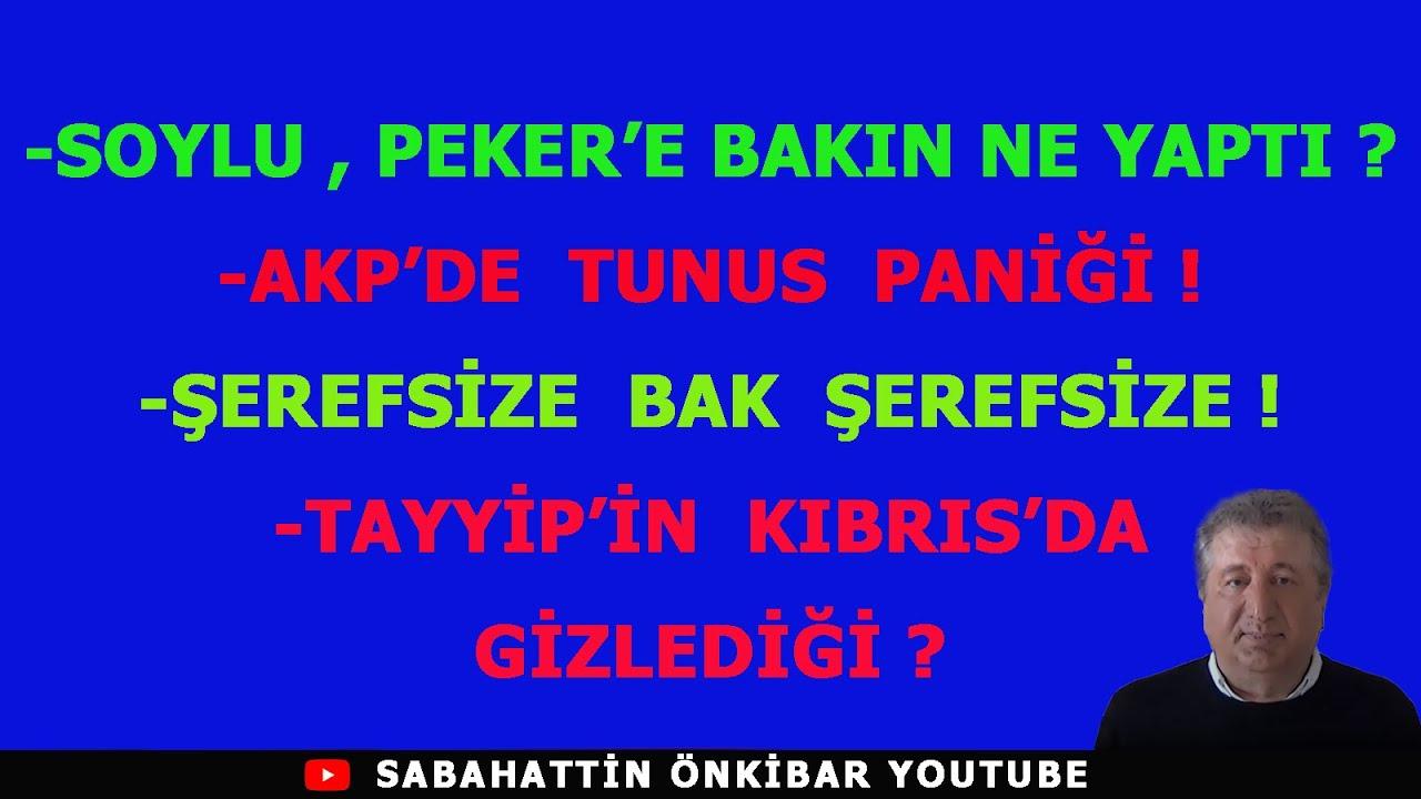 SOYLU,PEKER'E BAKIN NE YAPTI?..AKP'DE TUNUS PANİĞİ !..TAYYİP'İN KIBRIS'DA GİZLEDİĞİ?