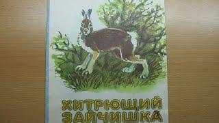 Николай Сладков. Хитрющий зайчишка.