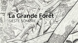#1 Sieste Sonore LA GRANDE FORET