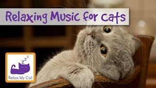 1 hour of relaxing music for cats - help separation anxiety - 1 hour cat music