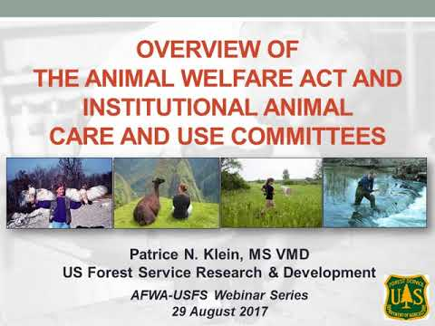 Webinar: Overview of the Animal Welfare Act