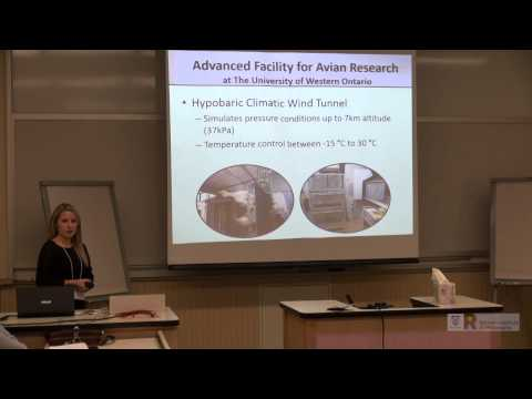 Andrea Boyer:  How is climate change impacting avian species?