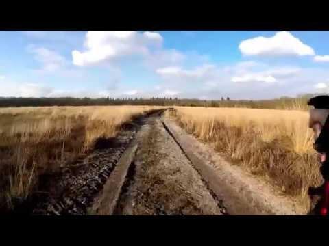 Hiking: Hoge Veluwe oost (NL)