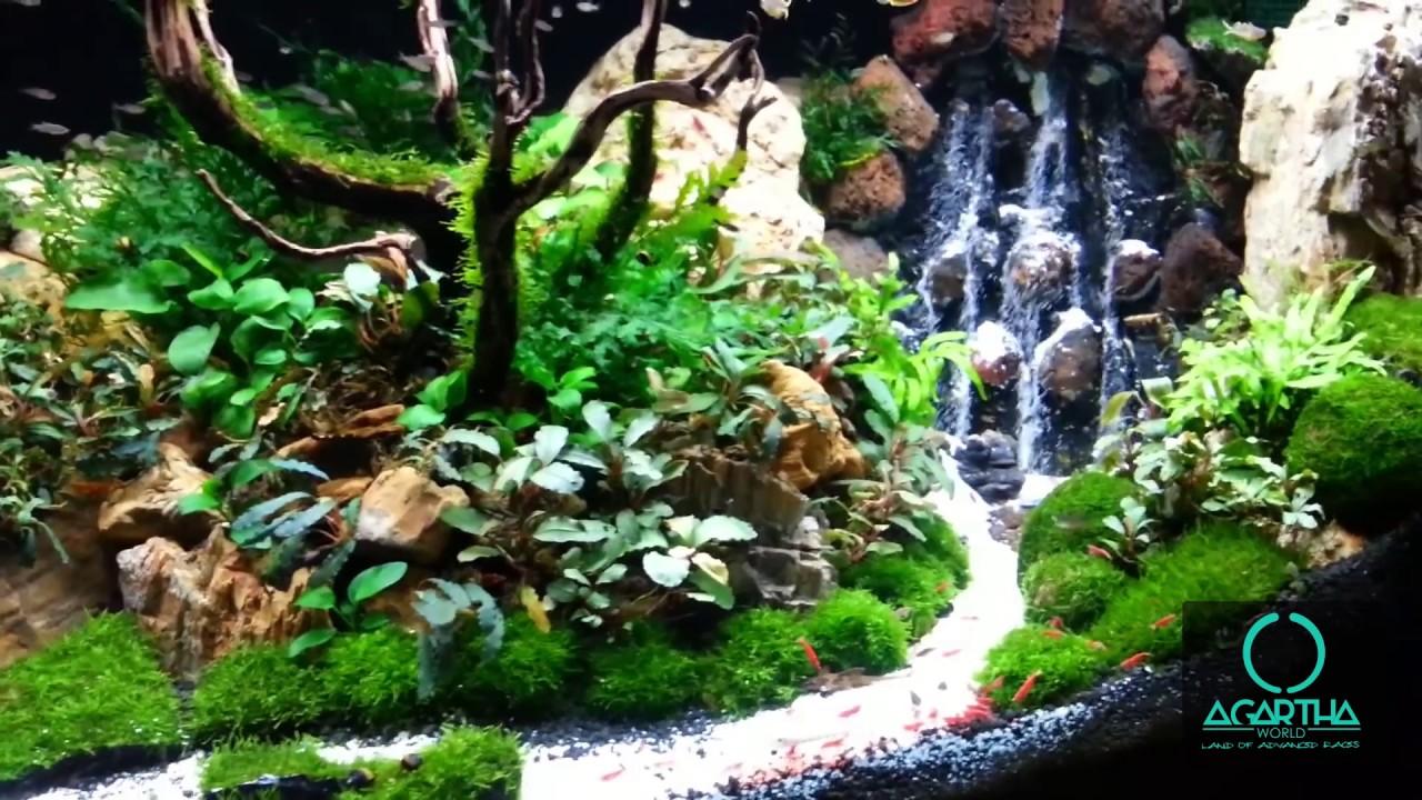 agartha world underwater waterfall aquarium 1 youtube