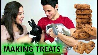 DIY Bunny Treats and Bini meets Lennon the Bunny