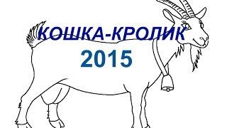 ГОРОСКОП - КОТ (КРОЛИК) в 2015 году - Астротиполог Дмитрий Шимко