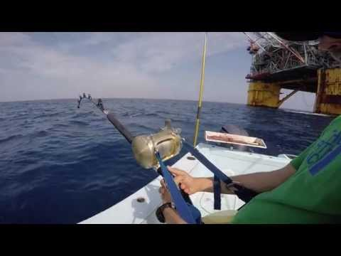 Venice Louisiana Tuna Fishing with Paradise Outfitters