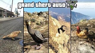 GTA 5 - Play as a Bird (Chicken, Seagull, Hawk, Crow & more) [PS4 & Xbox One]