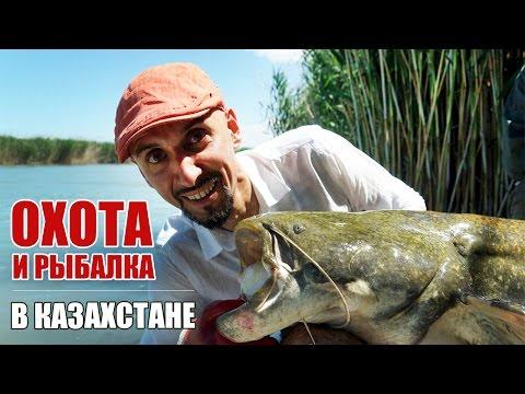 Рыбалка и охота в Казахстане. Рыболовно-охотничья база