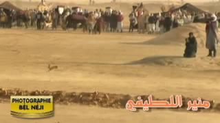 مشهد الصيد بالسلوقي - مهرجان الدولي للصحراء بدوز