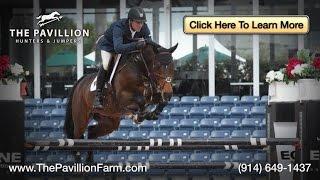 Hunter Jumper Horse Trainer   North Salem   Westchester NY   The Pavilion Farm