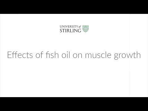 Effects Of Fish Oil On Muscle Growth W/ Professor Kevin Tipton