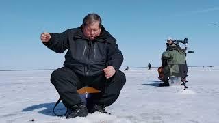 Весенняя рыбалка на базе Ситинка. Документальный фильм.