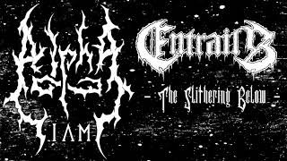 Watch Entrails The Slithering Below video