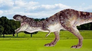 T-rex VS Raptor - Dinosaur animated Fight