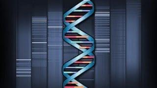 MUSIC of HISTORY - Genetic Rhythm
