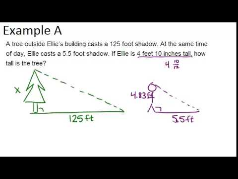 Indirect Measurement: Examples (Geometry Concepts) - YouTube