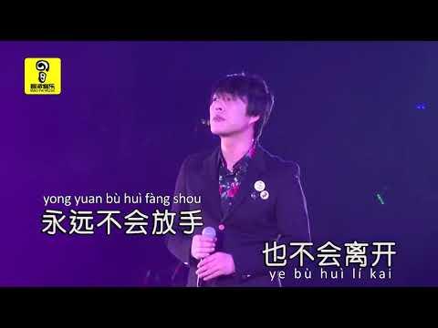 许多年以后 Xu Duo Nian Yi Hou  - Zhao Xin 赵鑫 KTV