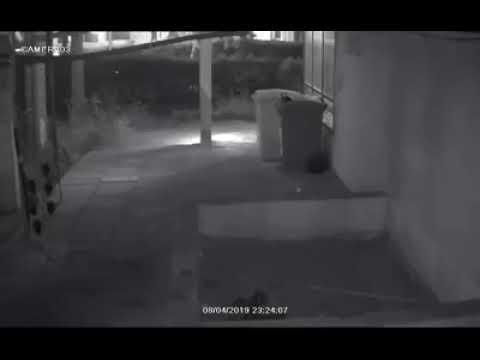 פגיעה במצלמות אבטחה בבניין