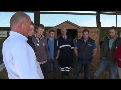 Cow Signals - Calf & Heifer Rearing, Simon Harper