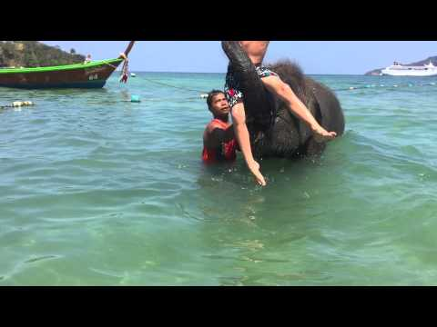 Charlie swimming with baby elephant Jajja in Phuket, Thailand.