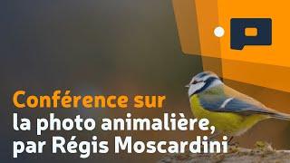 Conférence sur la photo animalière, par Régis Moscardini - Apprendre la Photo