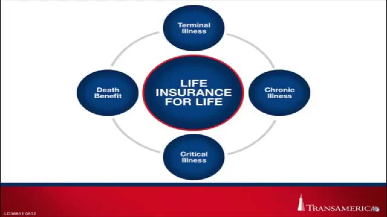 Transamerica Life Insurance Quotes Transamerica Lb  Youtube