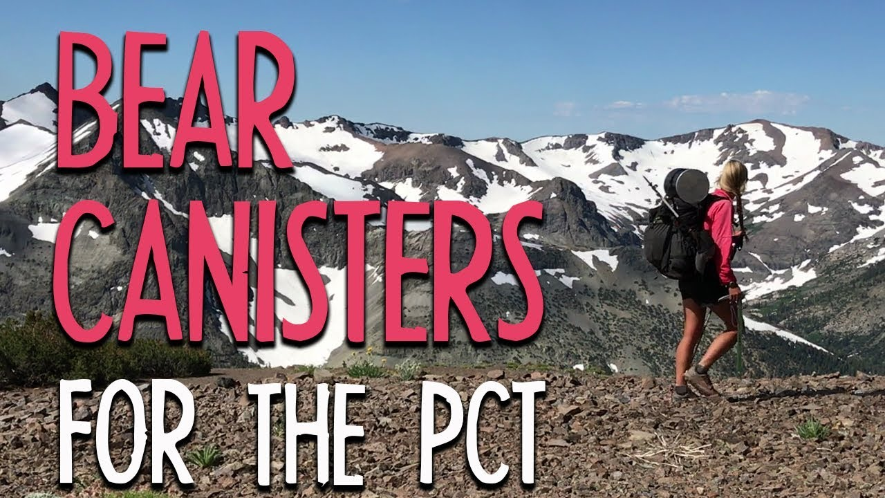 Bear Canisters For The PCT