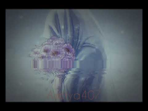 aisyah-istri-rasulullah--cover-lyrics-(auto-baper)