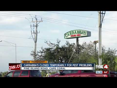 Carrabba's Restaurant Temporarily Closed Down In Cape Coral