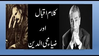 Allama Iqbal poetry in urdu for youth ~Allama Iqbal Poetry ~ Voice Zia Mohiuddin