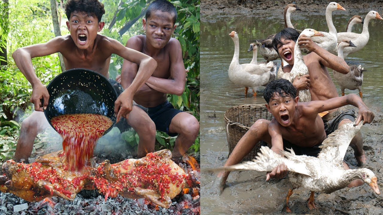 Primitive Technology - Wow! Meet Goose And Take Cooking - Eating Delicious
