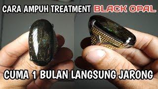 Download Video Cara Cepat Treatment Black Opal, 1 Bulan langsung Keluar Jarong MP3 3GP MP4