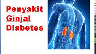 Patofisiologi Gagal Ginjal Kronik Karena Diabetes Y Alcohol Comorbidades Diabetes Y Alcohol