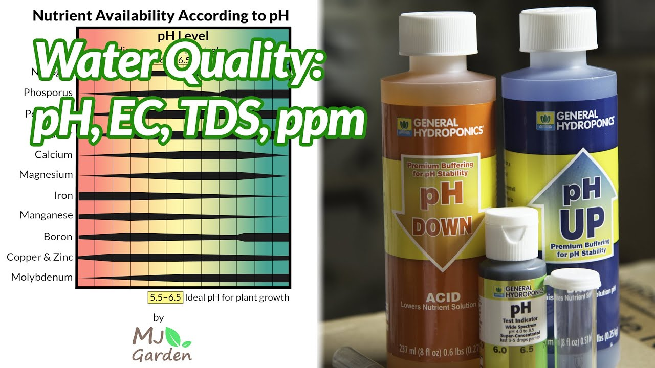 Water Quality, pH, TDS, EC at SNAP Hydroponics