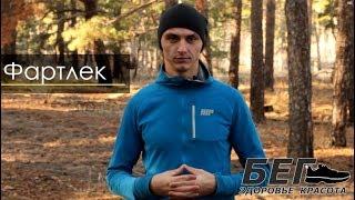 видео Что каждый бегун должен знать о тренировках по пульсу