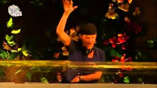 Tomorrowland 2013 - Avicii