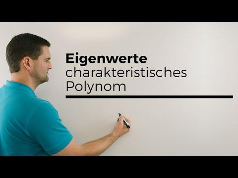 Eigenwerte, charakteristisches Polynom,