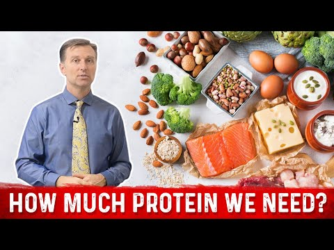 How Much Protein Do You Need? Explained by Dr. Berg