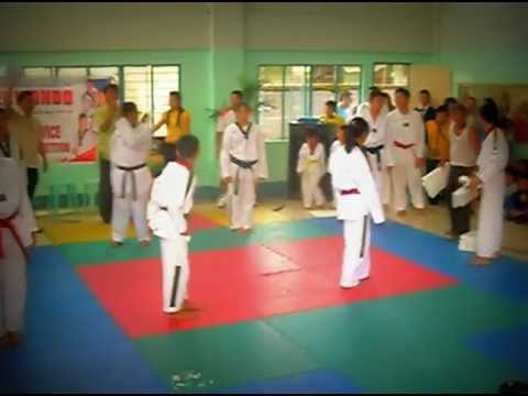 UZ the wildcats team demo tkd