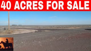OWNER  FINANCED  LAND IN OREGON 40 ACRES FOR SALE