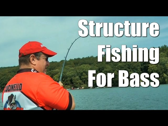 Structure Fishing for Bass