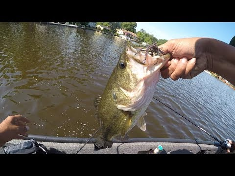 Bass Fishing The Chain Of Lakes In Illinois