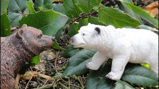 ДВА МЕДВЕДЯ: белый и бурый, а также ВАЖНАЯ ПТИЦА. 3 серии мультиков про животных для детей