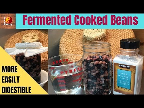 Fermented Cooked Beans for More Easily Digested