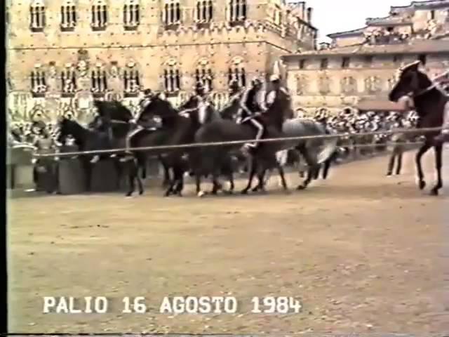 Palio 16 agosto 1984