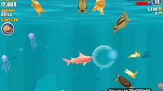 Gambar cover Tek bölümlük Hungry Shark Evolution
